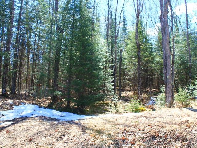 mls# 176654 - little pine rd 7580 - hurley, wi - pic 34