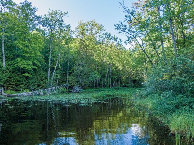 mls# 180868 - forty niners rd 11286 - presque isle, wi - pic 40