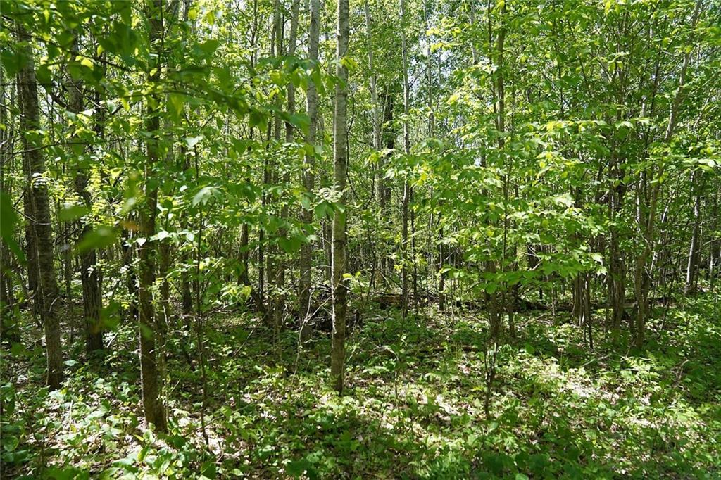 mls# 1542693 - 24229 county rd - webster, wi - pic 31