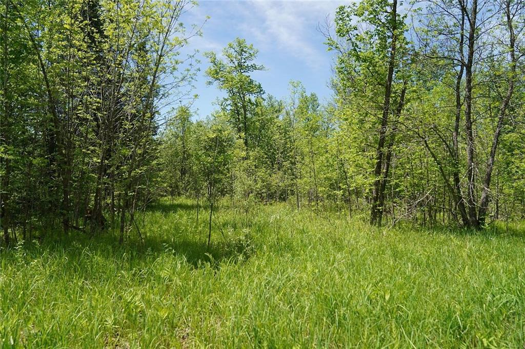 mls# 1542693 - 24229 county rd - webster, wi - pic 32