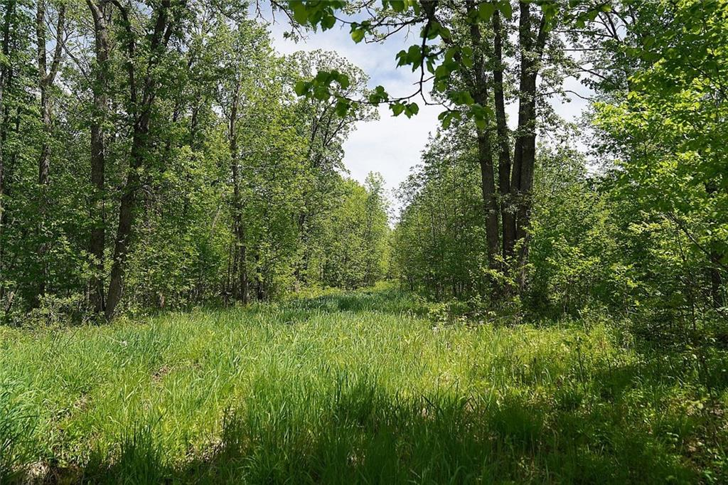 mls# 1542693 - 24229 county rd - webster, wi - pic 33